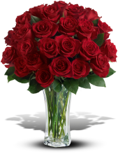 Love and Devotion - 2 Dozen Long Stemmed Red Roses