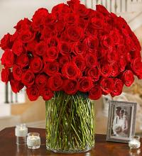 One Hundred Premium Red Roses in a Vase